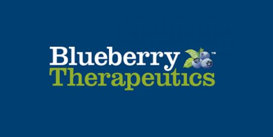 Blueberry test
